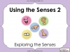 Using the Senses (KS1 Poetry Unit) Teaching Resources (slide 20/59)